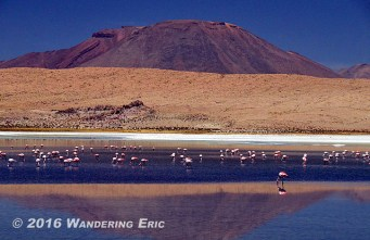 20141027_first-lake-with-flamingos