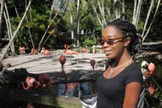 flamingo-gardens-31
