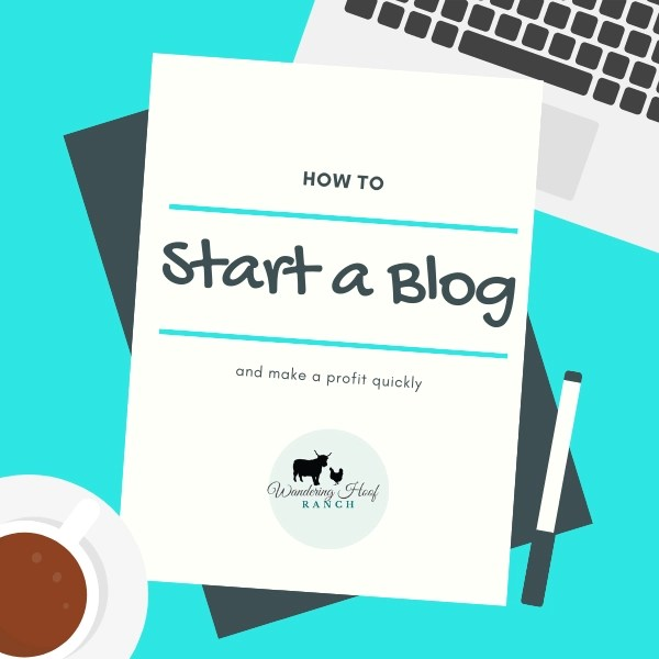 Want to start a profitable blog? It's an easy way to make money from home, easy to get started and you can do it anywhere in the world with wifi! I can help you do it fast and effectively with five easy steps.