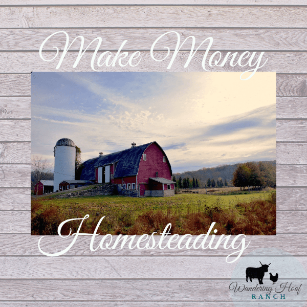 "47 ""tried and true"" tested ways to make money on a homestead. Tips to get started homesteading for beginners spoken from experience and homestead experts."