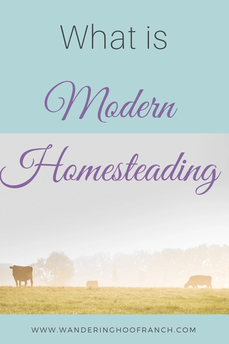 How to homestead guide. Simple living in a modern world. What is homesteading and tips for urban, small 1 acre homesteads and larger homesteads.