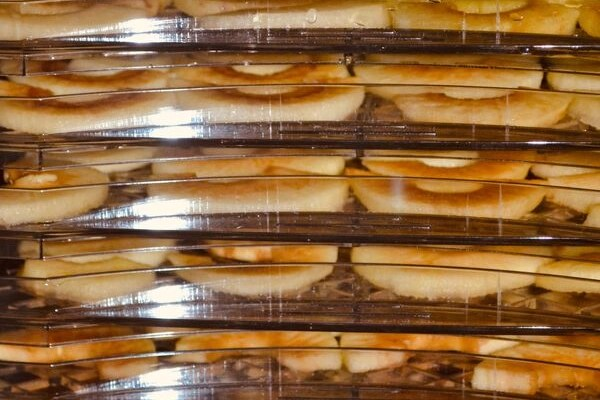 apples dehydrating