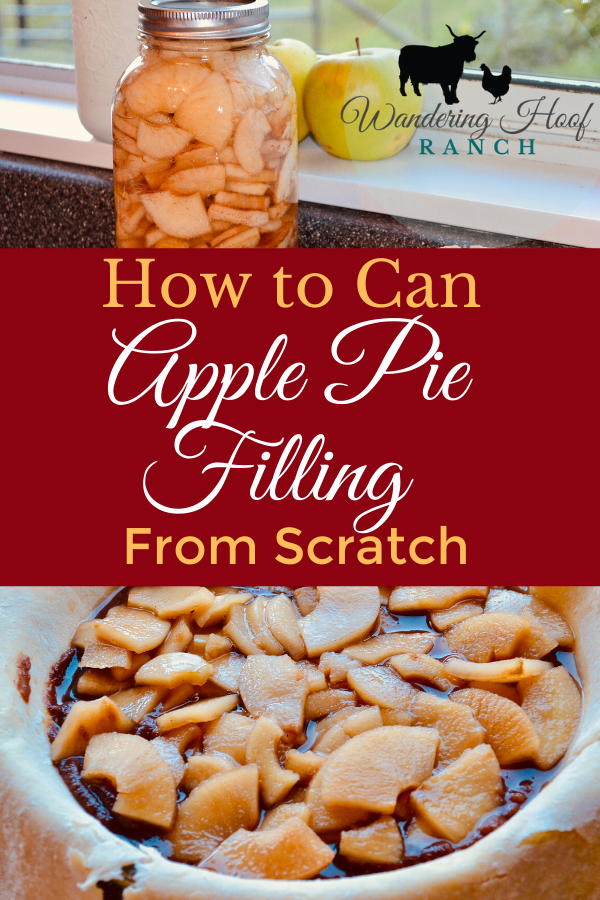 This Apple Pie Filling recipe is a quick and easy option for canning apples in bulk, When apple season is at its peak. A great desert filling to have ready to go in the pantry for apple pies, cobblers, crisps and cakes!