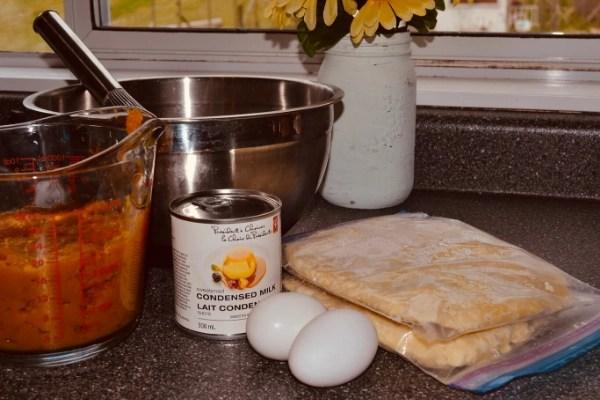 pumpkin pie ingredients sitting on the counter