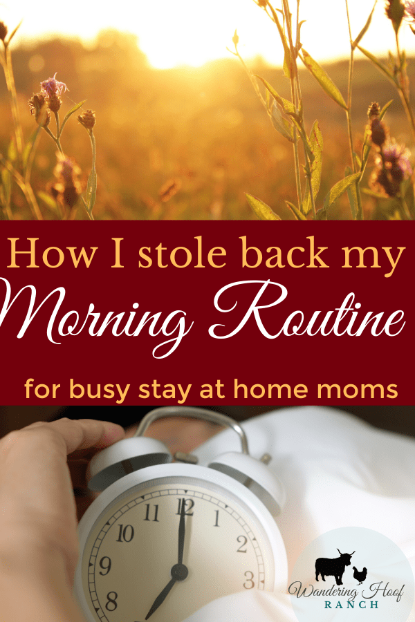 Take back your mornings by getting up with the rooster, and following a morning routine for the most productive day possible- even with kids.
