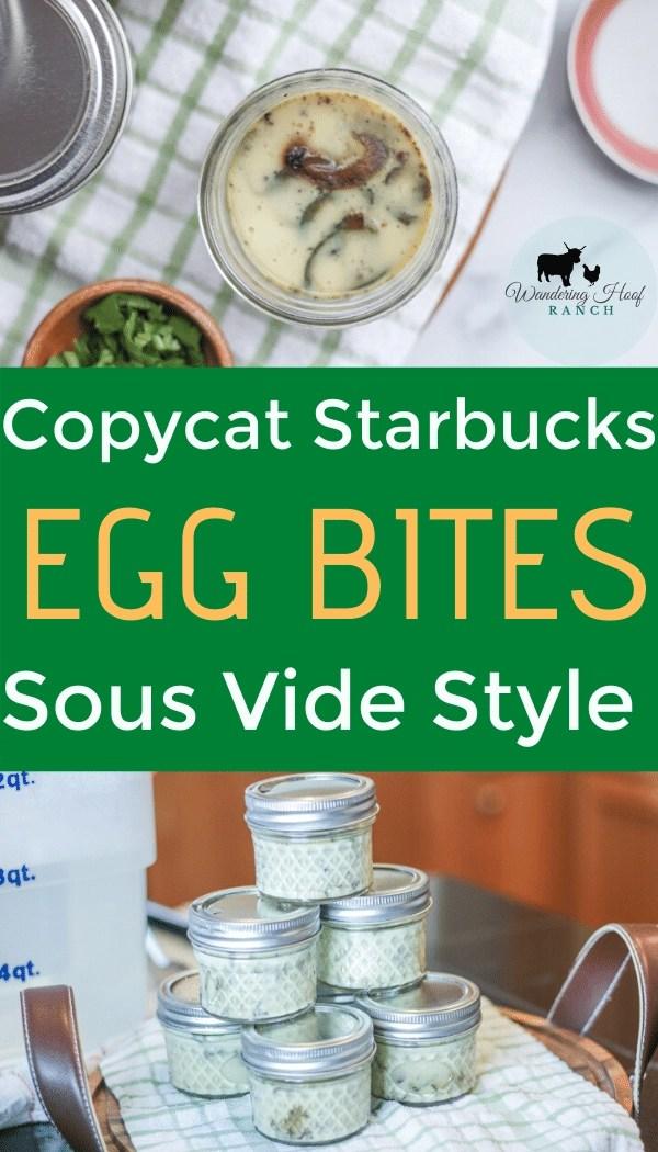 Copycat Starbucks egg bites sous vide style