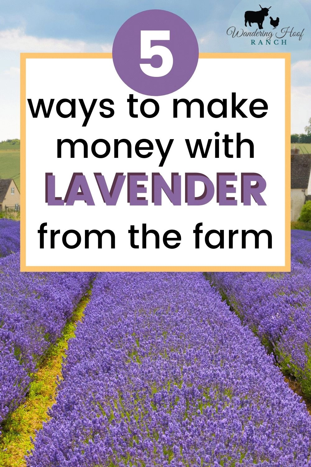 5 easy to make money with lavender from the farm