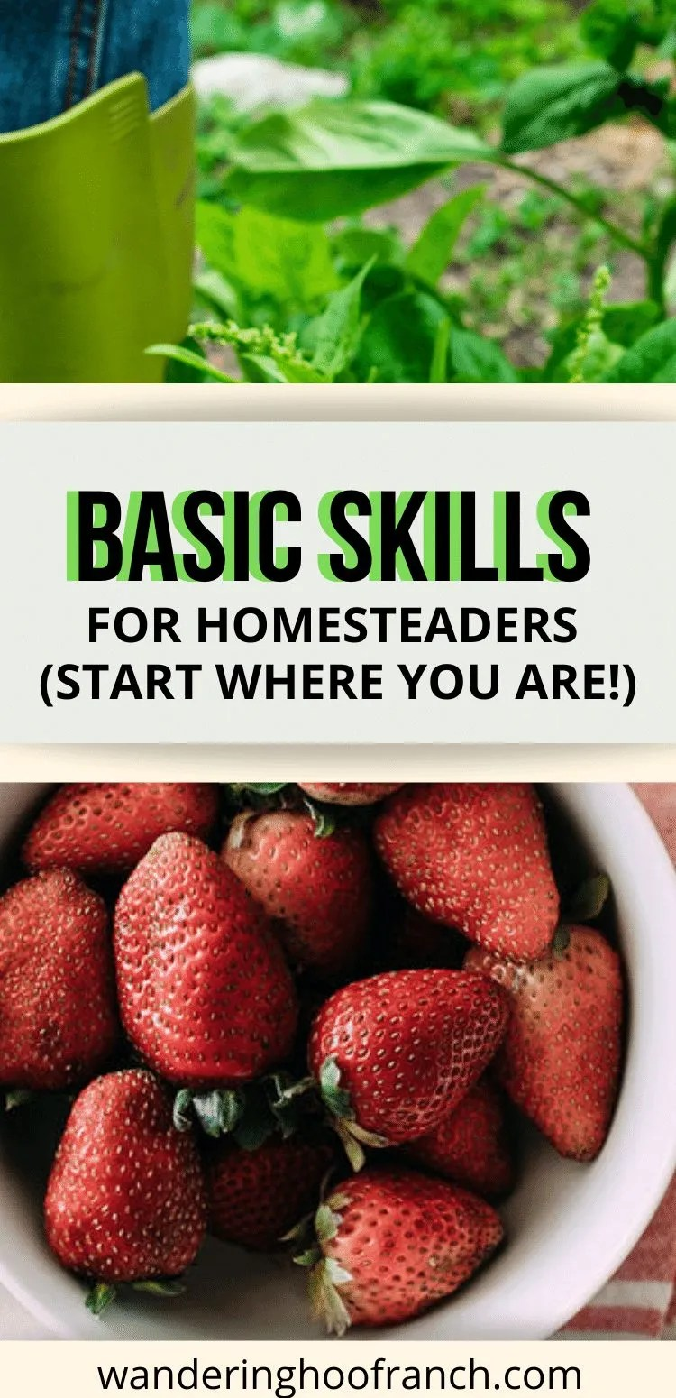 basic skills for homesteaders pin