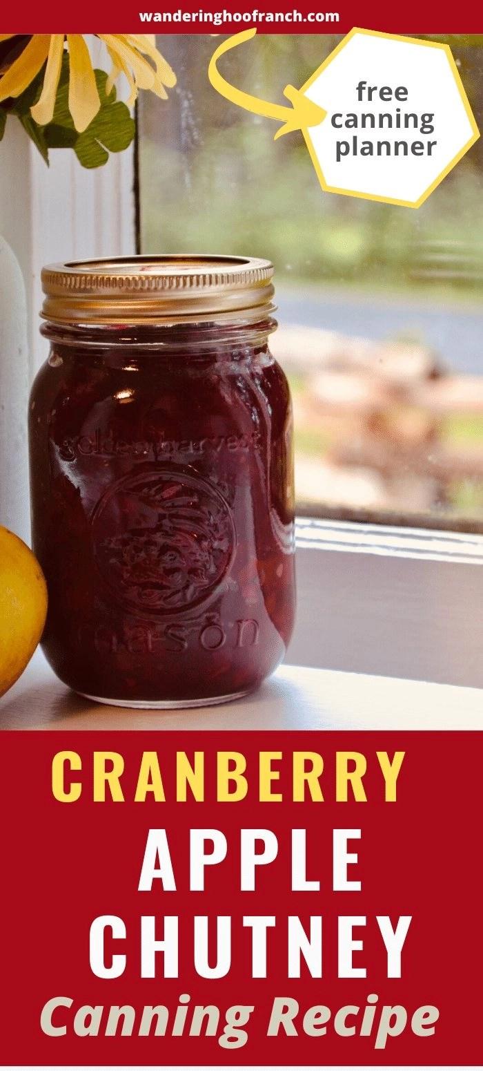 apple cranberry chutney mason jar picture pin
