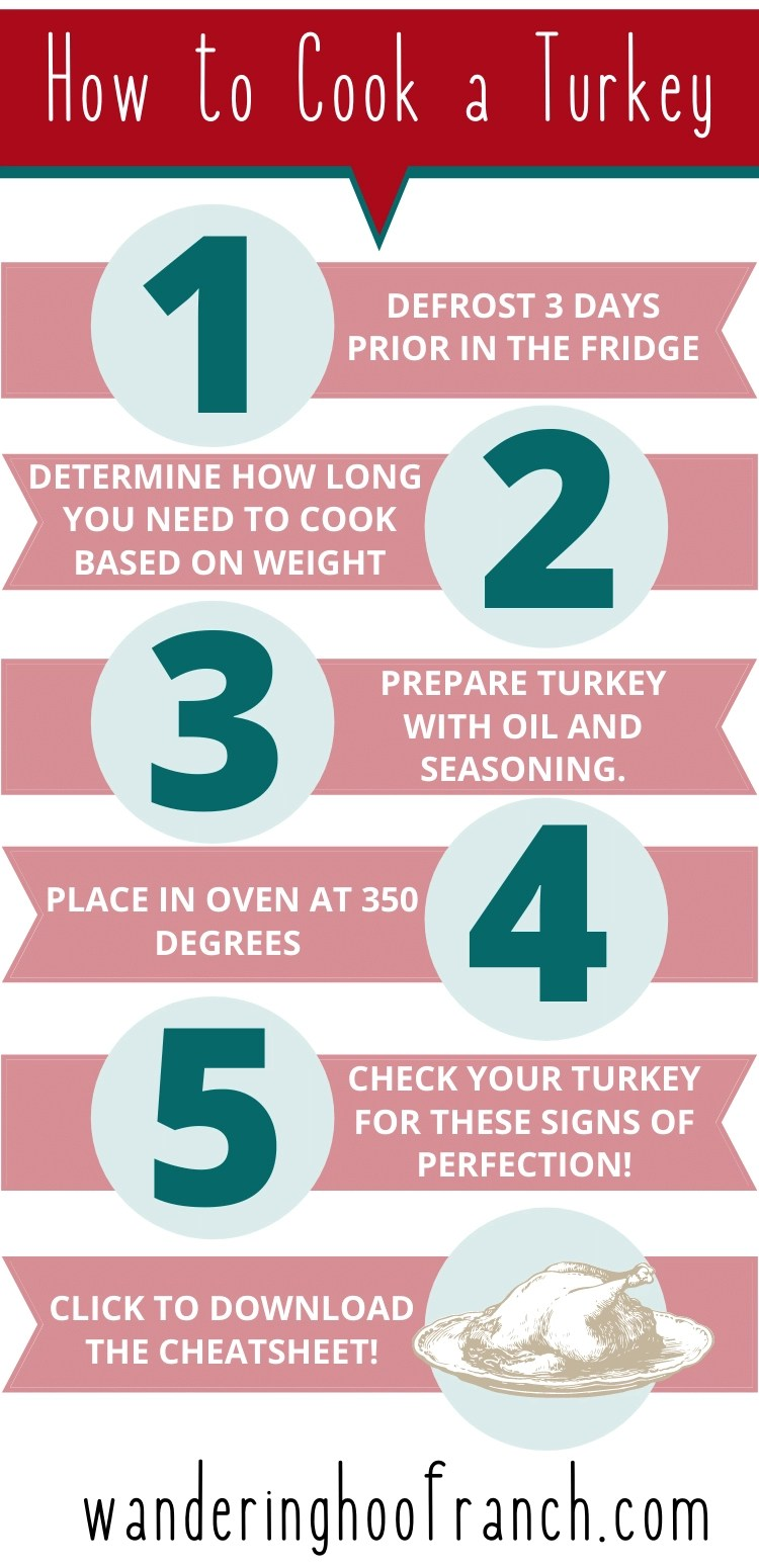 Steps to cooking a turkey for beginners infographic- how to cook a turkey in 5 steps