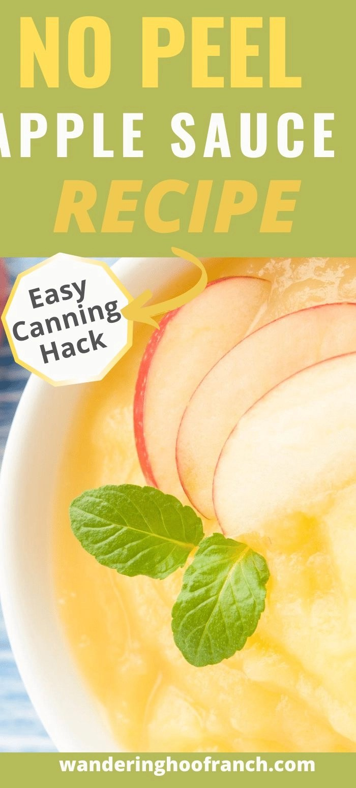 no peel apple sauce sitting in a white bowl waiting to be eaten with a few fresh apple slices on top with label no peel apple sauce recipe easy canning hack for Pinterest pinning