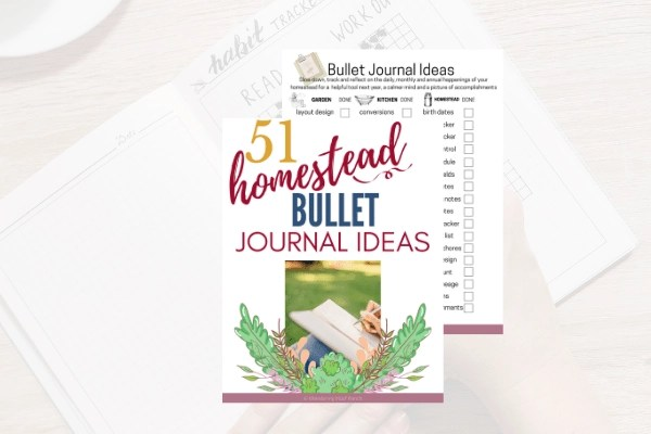 51 homestead bullet journal ideas product mock up including printables and desk background.