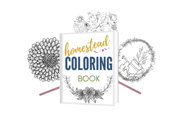 homestead colouring book