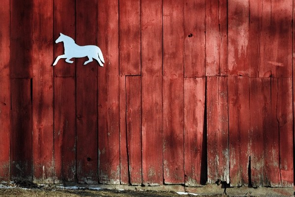 old red barn with white horse cut out  on stable for horse boarding business
