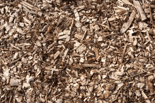 wood chips in a pile the top layer of the back to eden garden