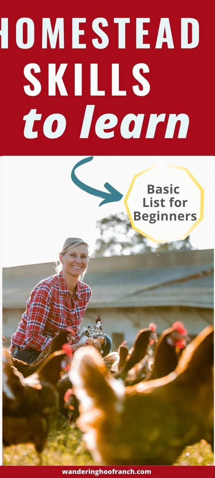 homestead skills to learn basic list for beginners pin image including homesteader smiling and feeding her large flock of chickens in front of the coop