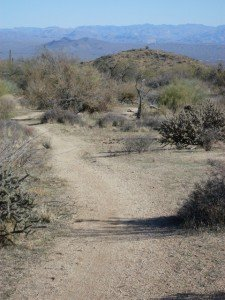 McDowell Mountains, Coachwhip, Pemberton, Bluff, Dixie Min