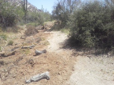 A case study in the wrong way to close a trail. Way to go, Scottsdale!
