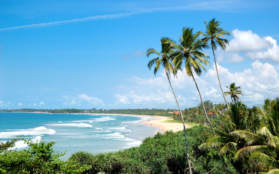 Things To Do In Sri Lanka With Kids