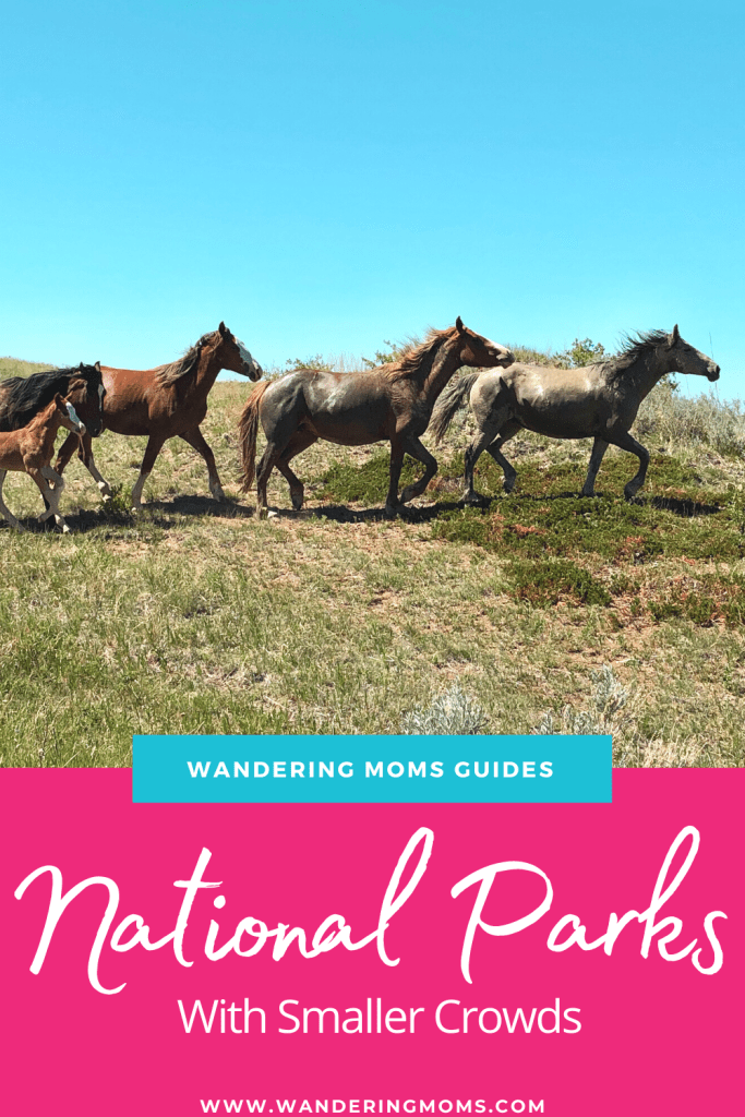 National Parks with Smaller Crowds: Which Parks to Visit This Summer - Wandering Moms