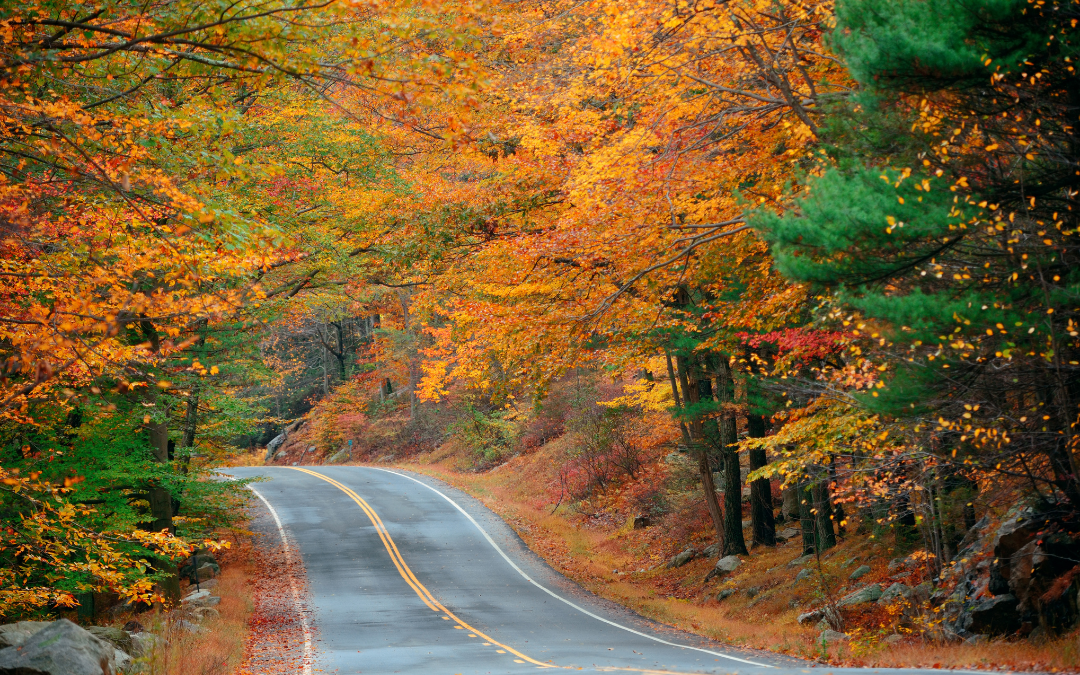 14 Most Beautiful Fall Foliage Road Trips in the US