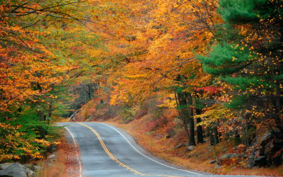 The 14 Most Beautiful Fall Foliage Road Trips in the US