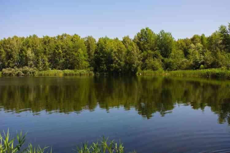 wild camping in Belarus is legal