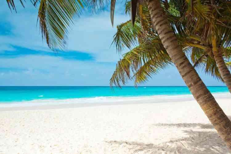 Maldives or Zanzibar