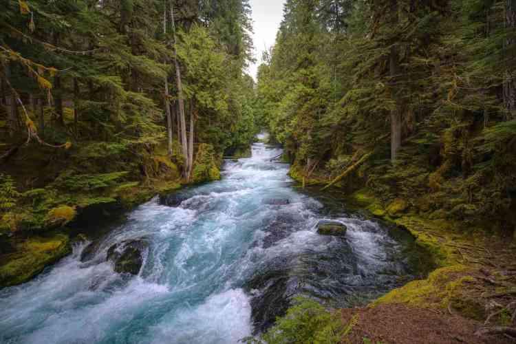 Dispersed camping in Oregon