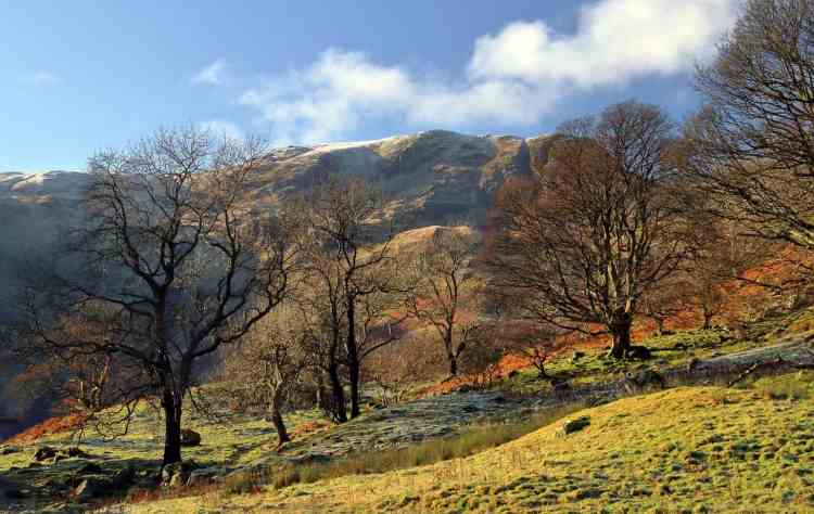 Camping in Cumbria