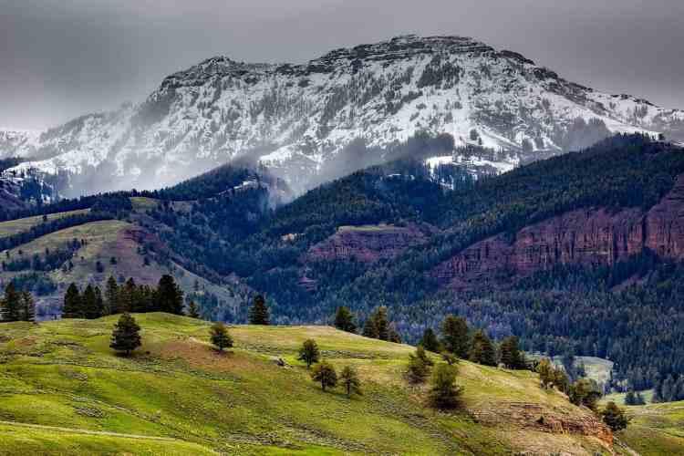 Yellowstone vs Yosemite