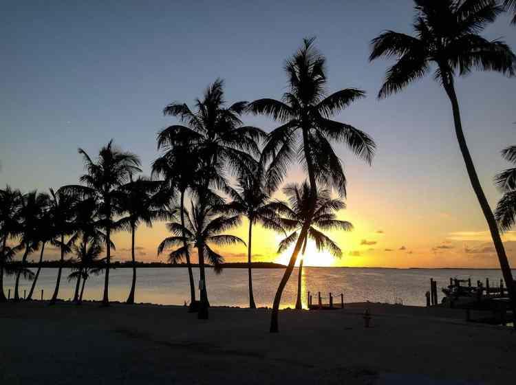 Key West or Key Largo