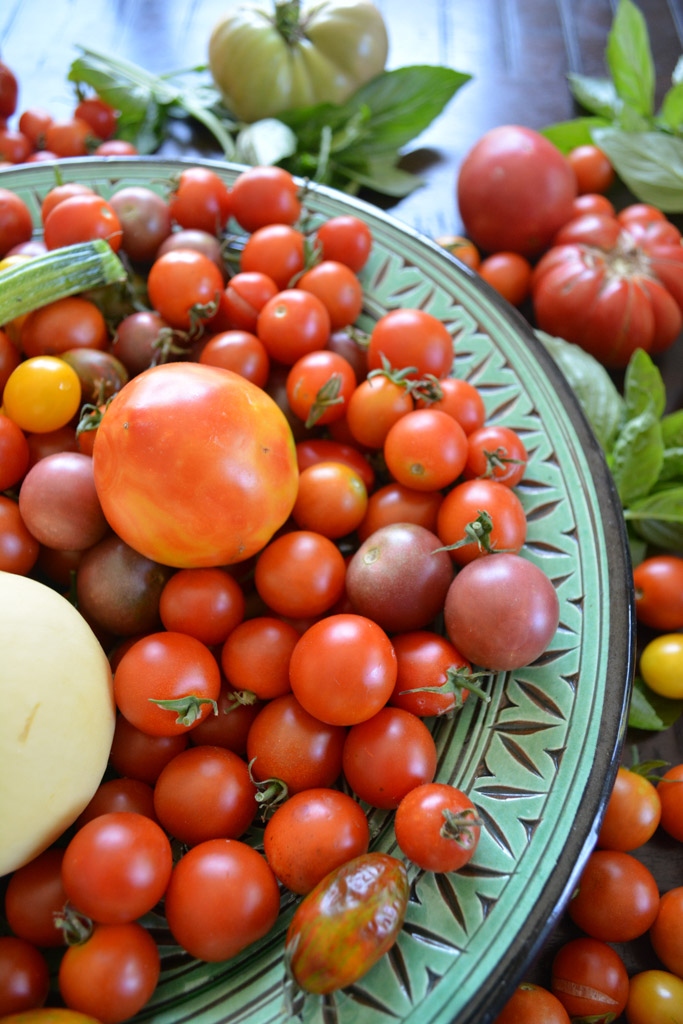 Fresh garden tomatoes - Homemade Roasted Tomato Sauce