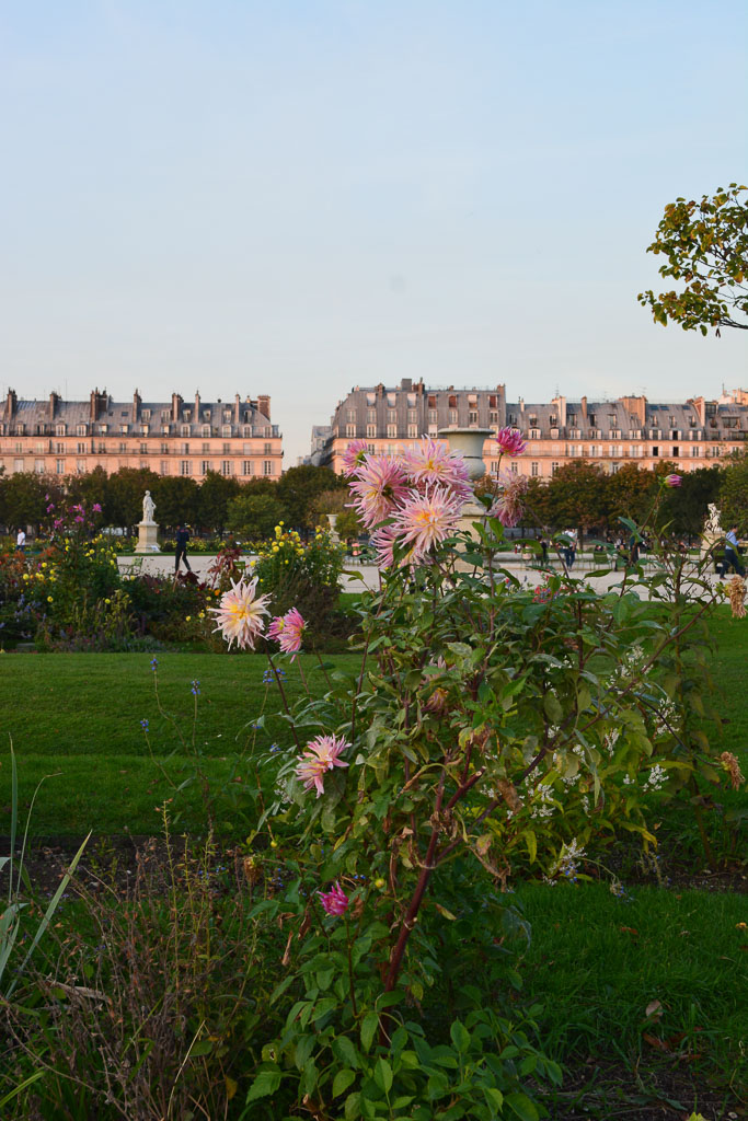 Comprehensive Guide to Paris:  Tuillerie Gardens