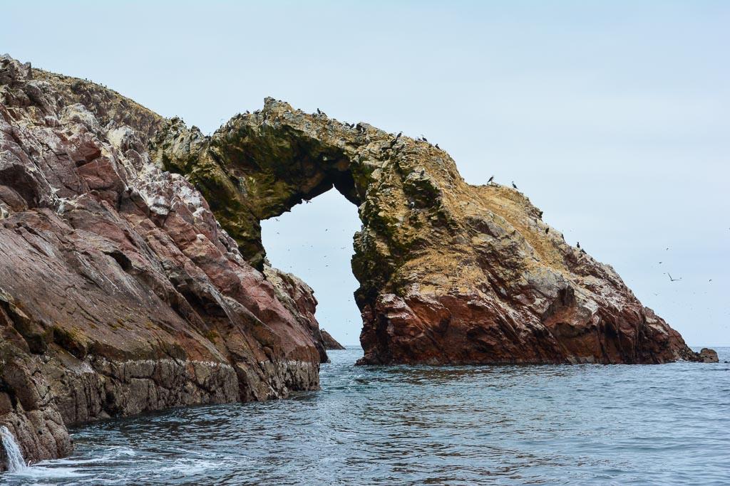 Las Islas Ballestas in Ica, Peru