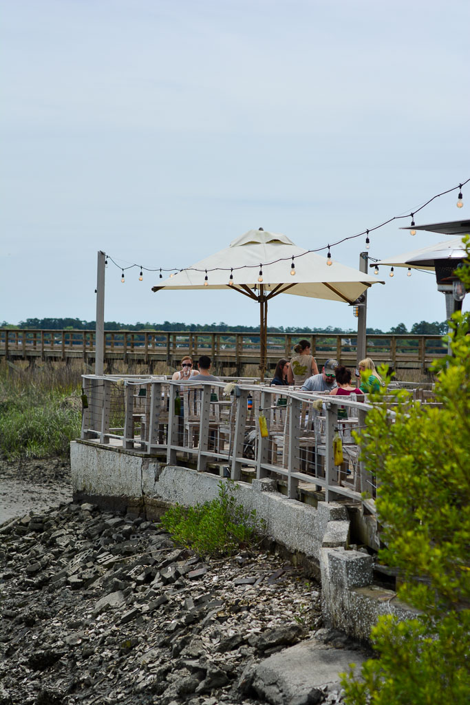 The Wyld Dock Bar
