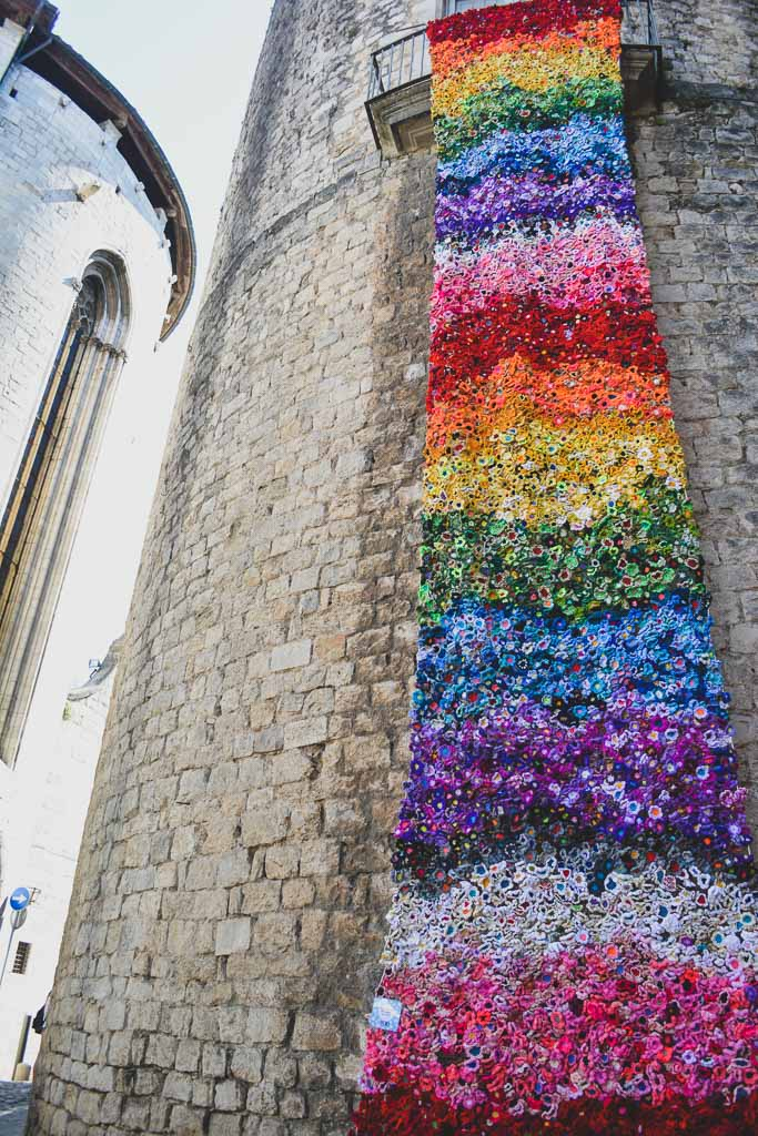 Flowers on the Cathedral of Girona