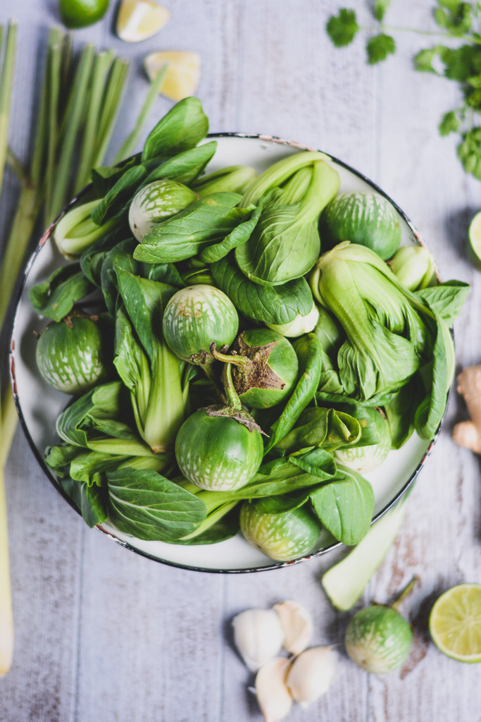 Thai Eggplant and Baby Bok Choy