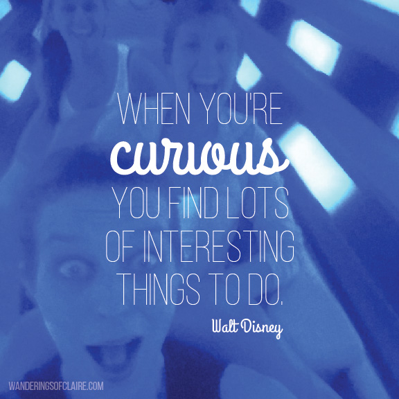 walt disney - curious quote