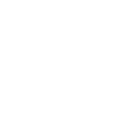 Wandering Sparrows