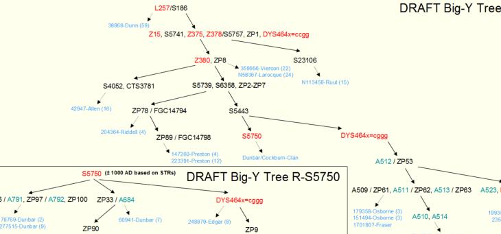 l257-partial-tree
