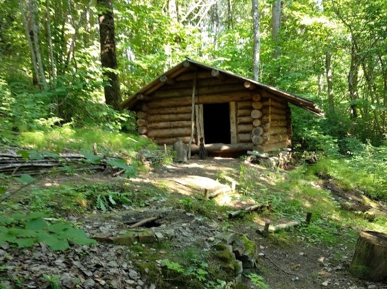 Ardu area forest with modern cabin