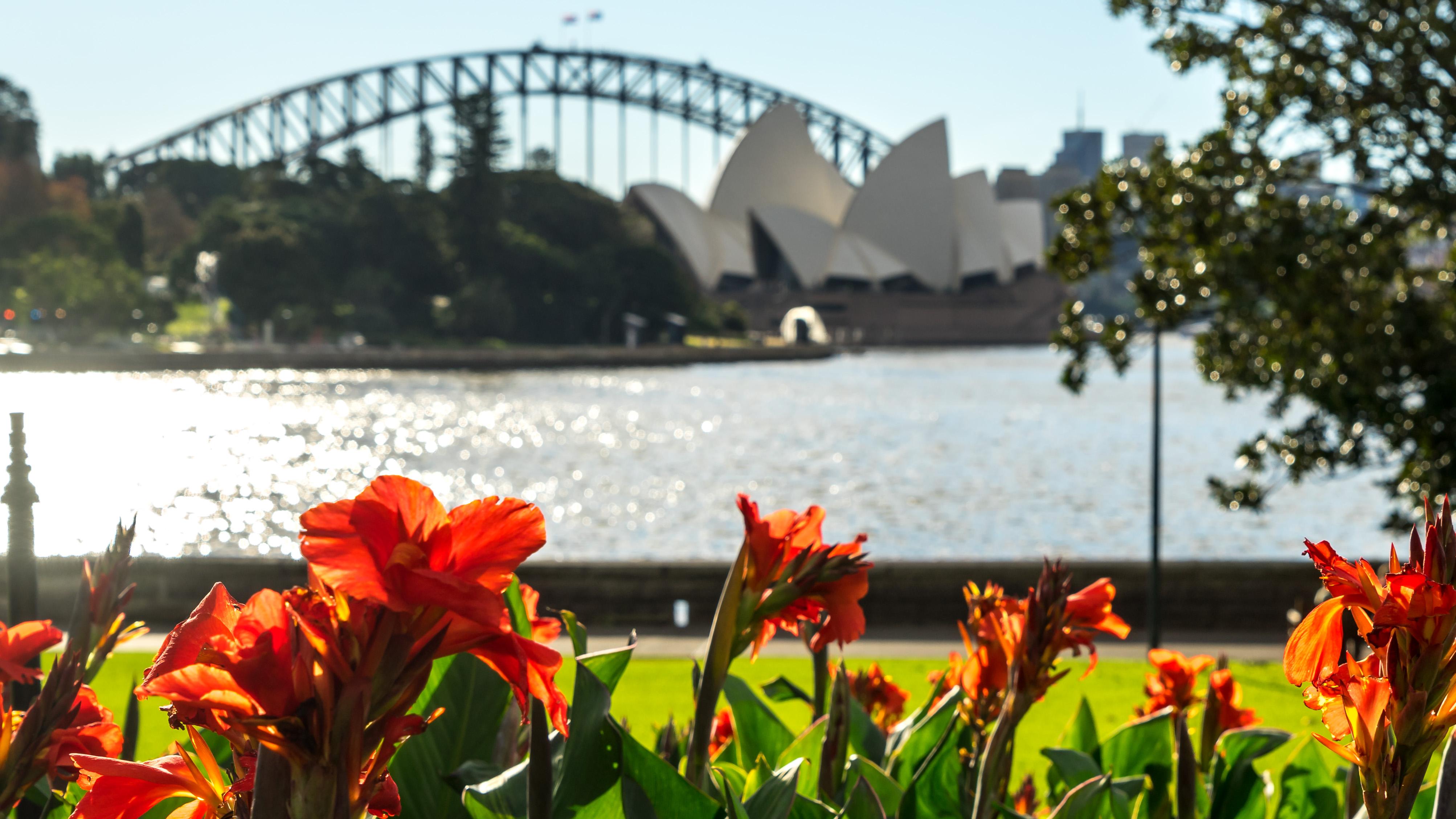 To Vivid Sydney