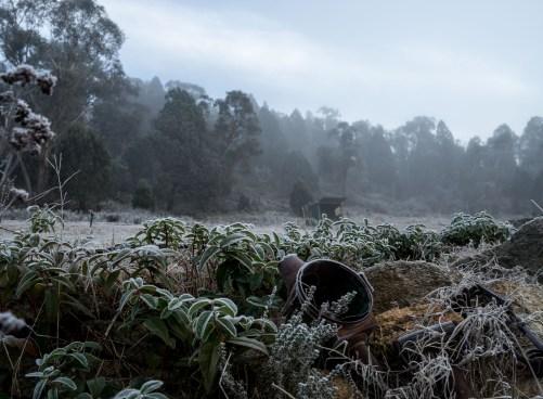 morning winter frost Australia