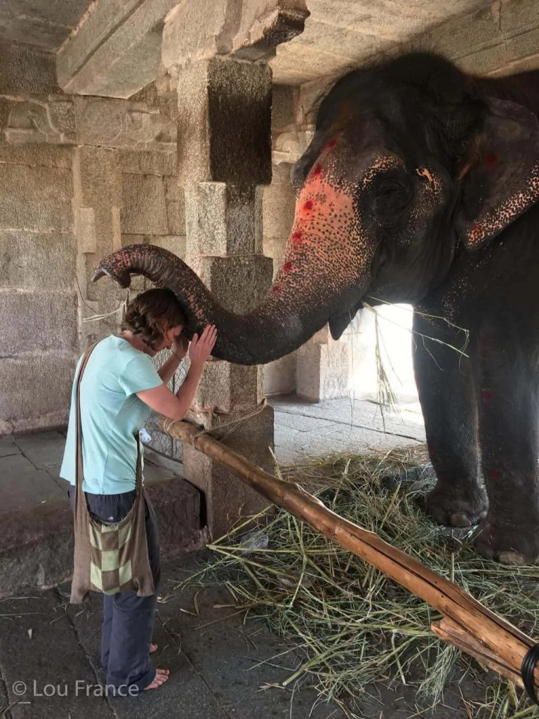 Getting blessed by an elephant is a special Indian experience
