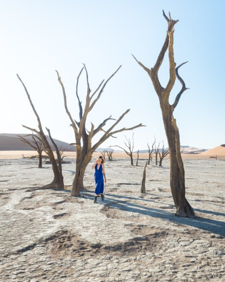 Deadvlei, Sossusvlei, Namibia by Wandering Wheatleys