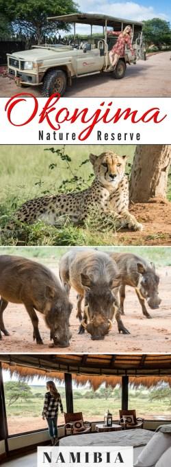 Okonjima Nature Reserve, Namibia by Wandering Wheatleys