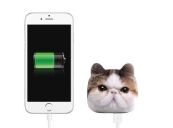 Cat Power Bank