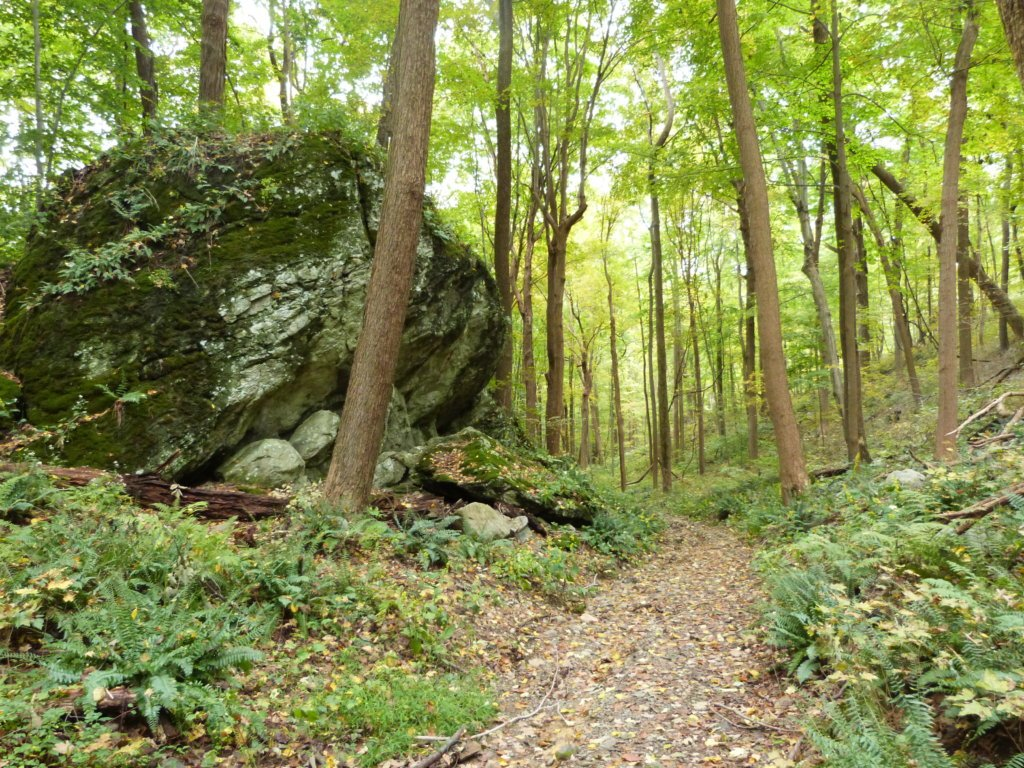 best hiking trails in