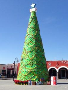 Lowest budget Christmas tree I've ever seen